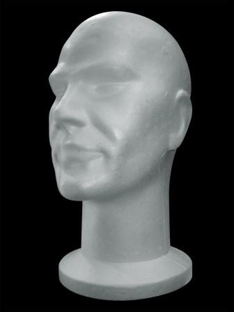 Model of the human head