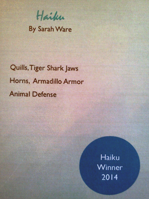 Animal Defense Haiku