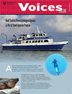 Voices Online November 2017