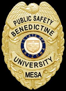 Mesa Public Safety Badge